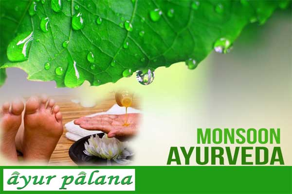 Monsoon Ayurveda